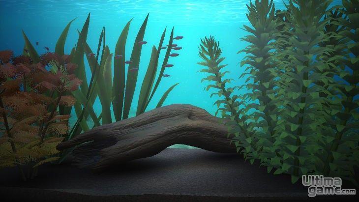Imágenes de Blue Oasis: Blue Oasis - Los peces virtuales de Wii ahora