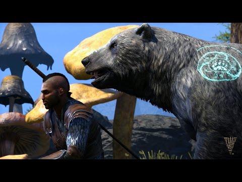 La naturaleza nos protegerá si vamos con algún Warden - Noticia para The Elder Scrolls Online: Morrowind